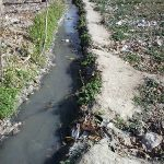 EC مجاز آب کشاورزی