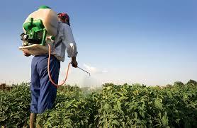 باقیمانده آفتکشها و سموم دفع آفات نباتی