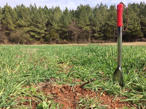 نمونه برداری خاک